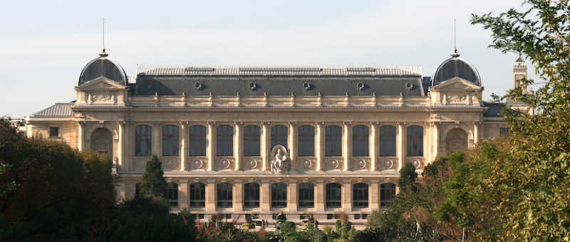 The is the exterior of the museum d'histoire naturelle at Paris.